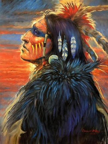 5D DIY Diamond Painting Kit - Native Spirit
