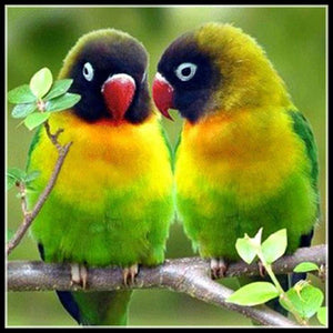 Yellow Green Love Birds | DIY 5D Diamond Art Painting Diamond Art Painter