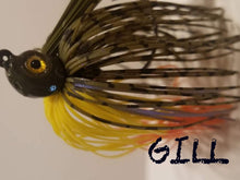 Load image into Gallery viewer, Weedless Swim Jig Page 2