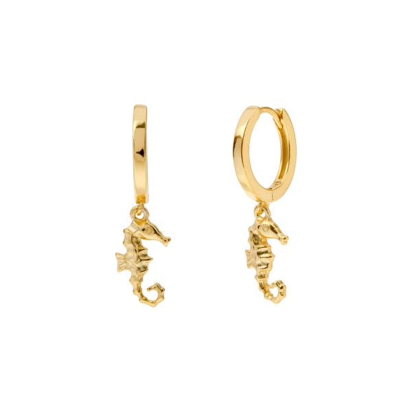 SEAHORSE GOLD EARRINGS