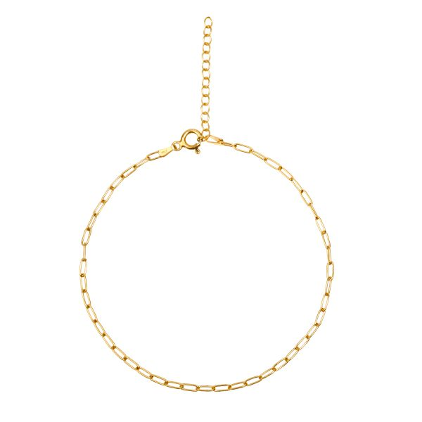 CHAIN GOLD ANKLET | ALEYOLÉ Jewelry