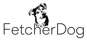 Fetcher Dog Charity