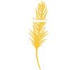 Hatch Retail Ltd