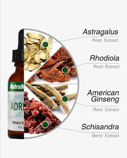 ADRENAL- ADRENAL SUPPORT