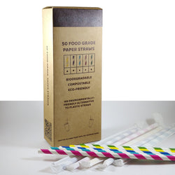 Paper Straws (individually wrapped)