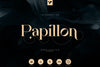 Papillon - Handcrafted Serif Font