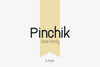 Pinchik Sans Family (5 fonts)