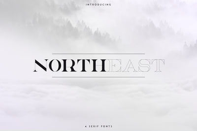 NorthEast - 4 serif fonts