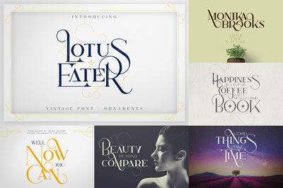 Bestseller Font Collection | 6in1