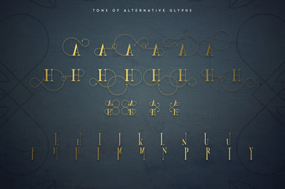 Golden Bird Serif font + Cool Extras