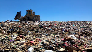 Five Easy Ways To Help Cut Landfill Waste