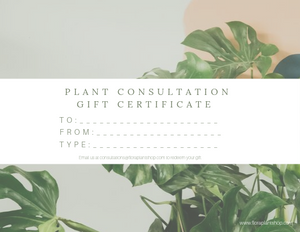 Consultation Gift Certificate