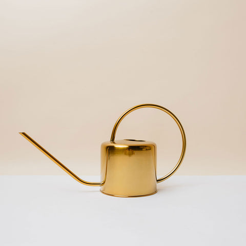 Vintage Brass Watering Can