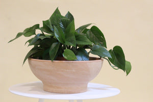 Light Marble Low Bowl Planter