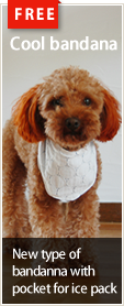 Free dog wear patterns : Cool Bandana