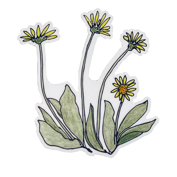 Peplow Balsamroot Stickers