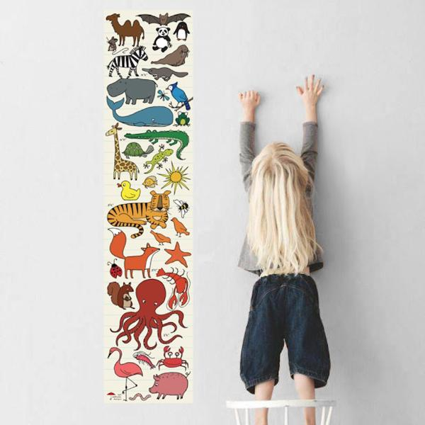 Animal Kingdom Growth Chart