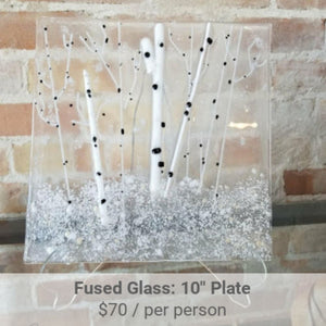 Fused Glass Plate Project