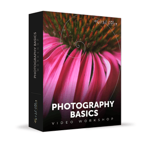 Photography Basics - Workshop - LensLab™