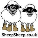 SheepSheep.co.uk