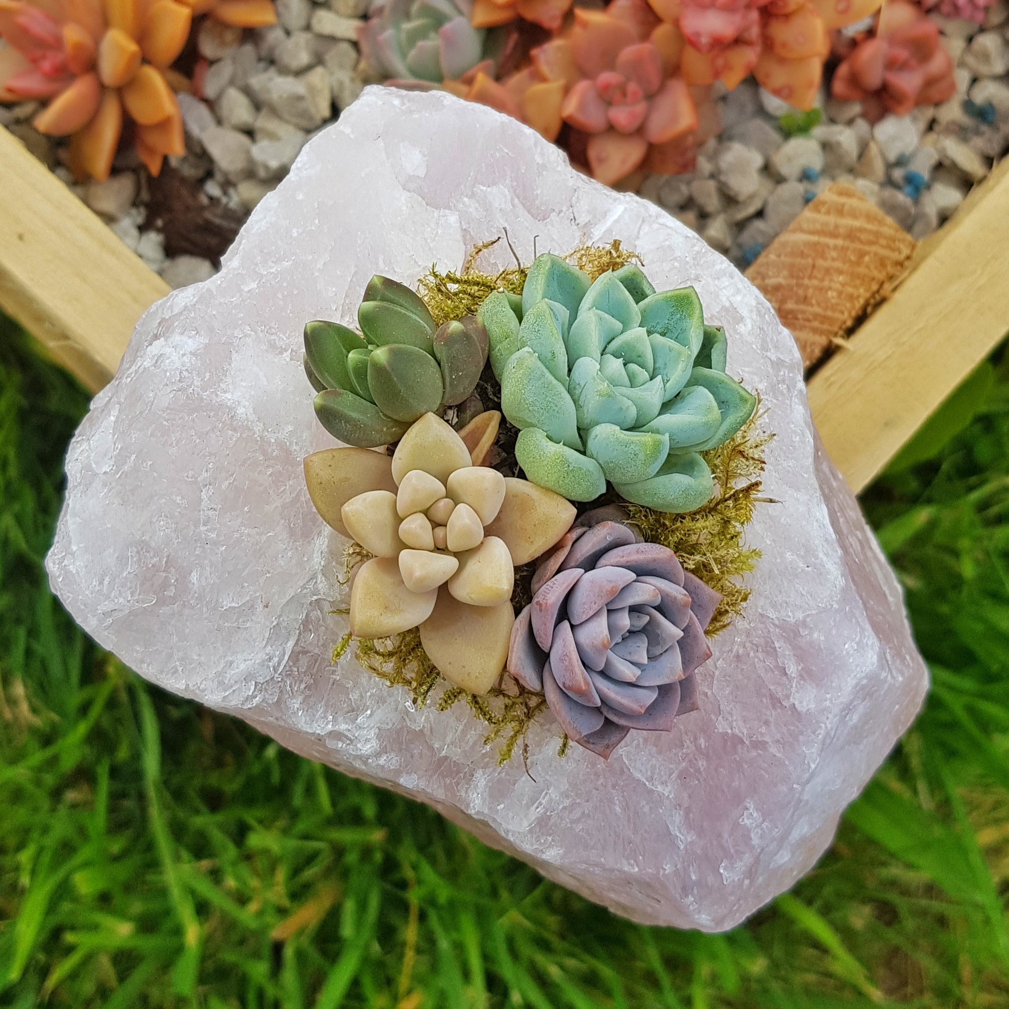 Rose Quartz Crystal Succulent Planter