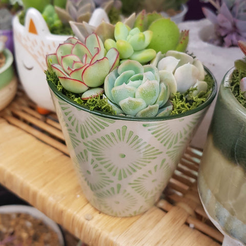 Green Patterned Ceramic Arrangement