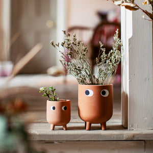 Terracotta eyes planter