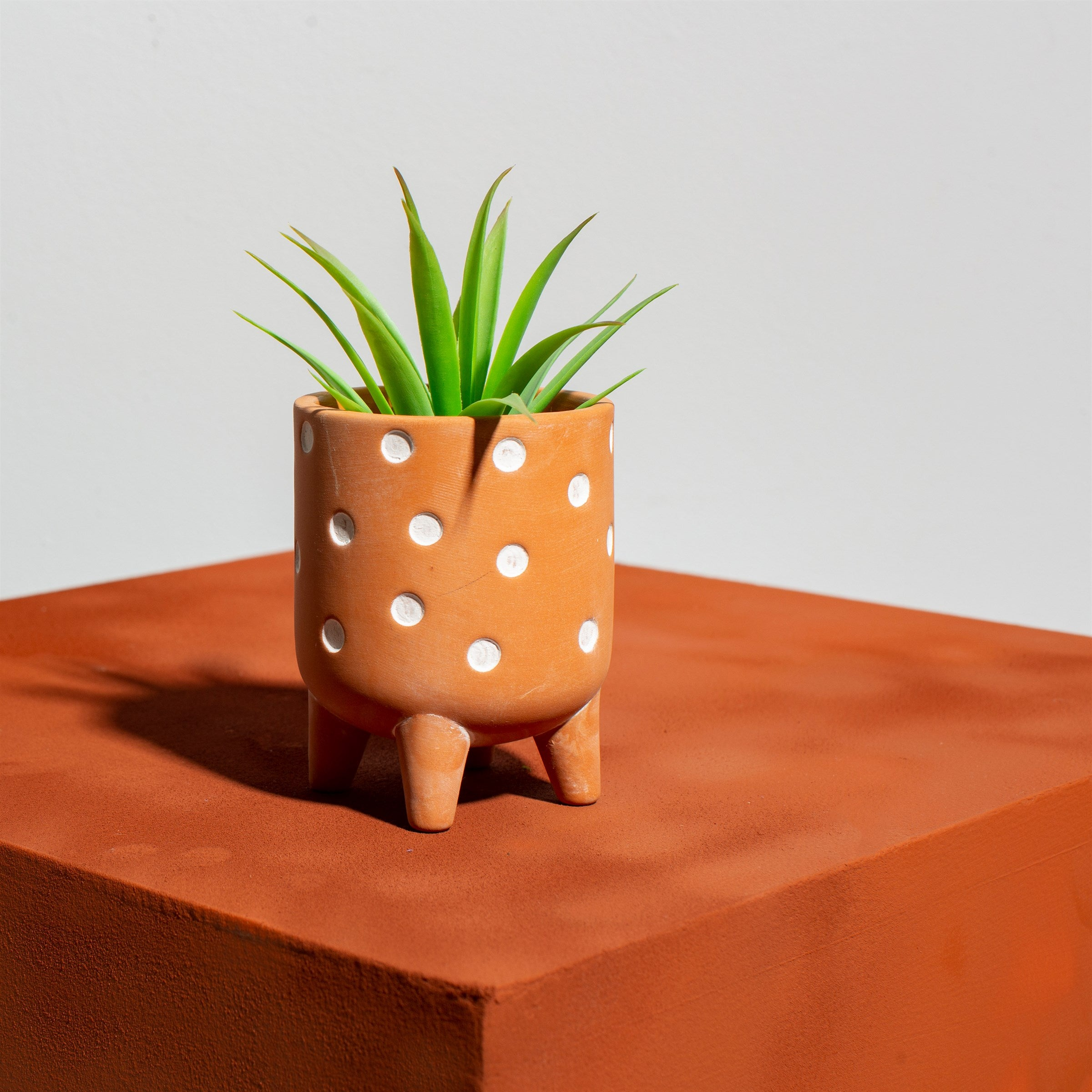 Polka dot terracotta planter