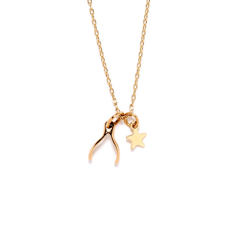 Wishbone Necklace - Bing Bang Jewelry NYC