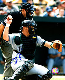 Toby Hall Autographed / Signed Catching 8x10 Photo