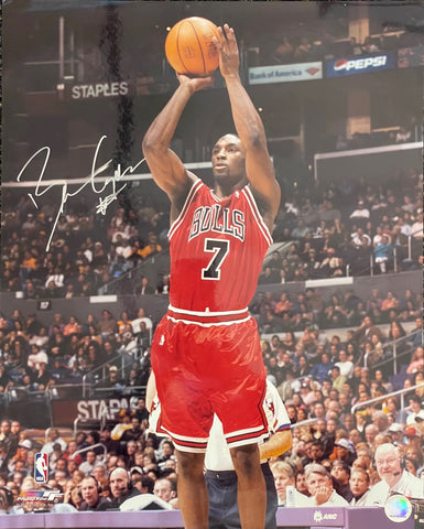 Ben Gordon Autographed 16x20 Basketball Photo