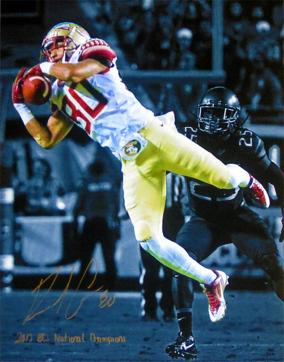 Rashad Greene 2013 BCS National CHampions Autographed 16x20 Spotlight Photo