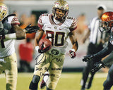 Rashad Greene 2013 BCS National Champions Autographed 8x10 Photo