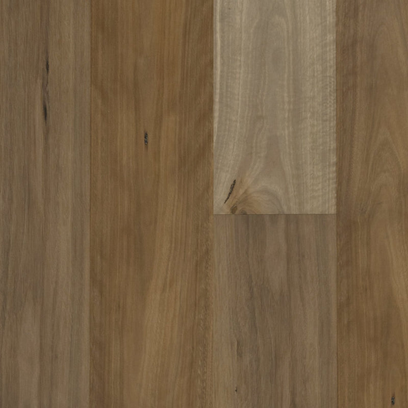 Spotted Gum - Uncoated - T&G