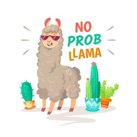 No Prob Llama - A Card Game of Chance