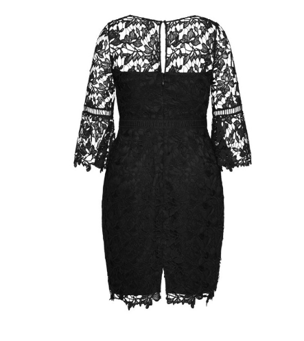 Plus Size lace Dress NZ