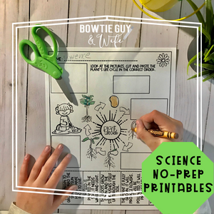 Life Cycle of a Plant SCIENCE NO PREP PRINTABLES FREEBIE