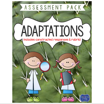 Adaptations Test with Constructed Response Assessment