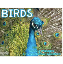 Load image into Gallery viewer, All About Birds Leveled Texts {Differentiated Reading Passages & Questions}