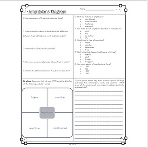 Amphibians Diagram & Comprehension Questions