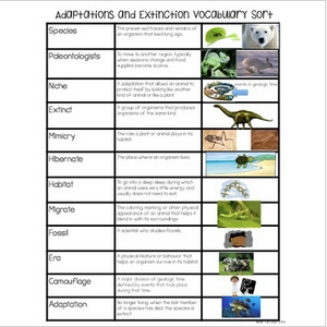 Animal Adaptations & Plant Adaptations & Extinction Vocabulary Sort