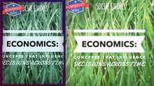 Load image into Gallery viewer, Economics Video: Basic Economic Concepts for student information