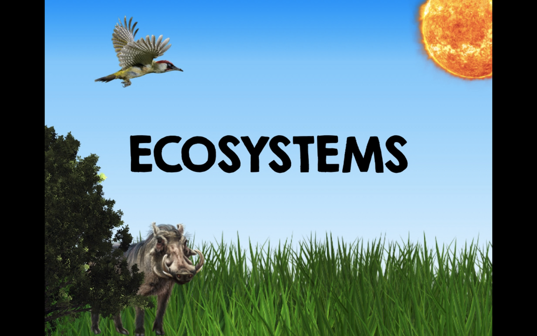 Ecosystems Video about carnivores, herbivores, omnivores, food chains, & more!