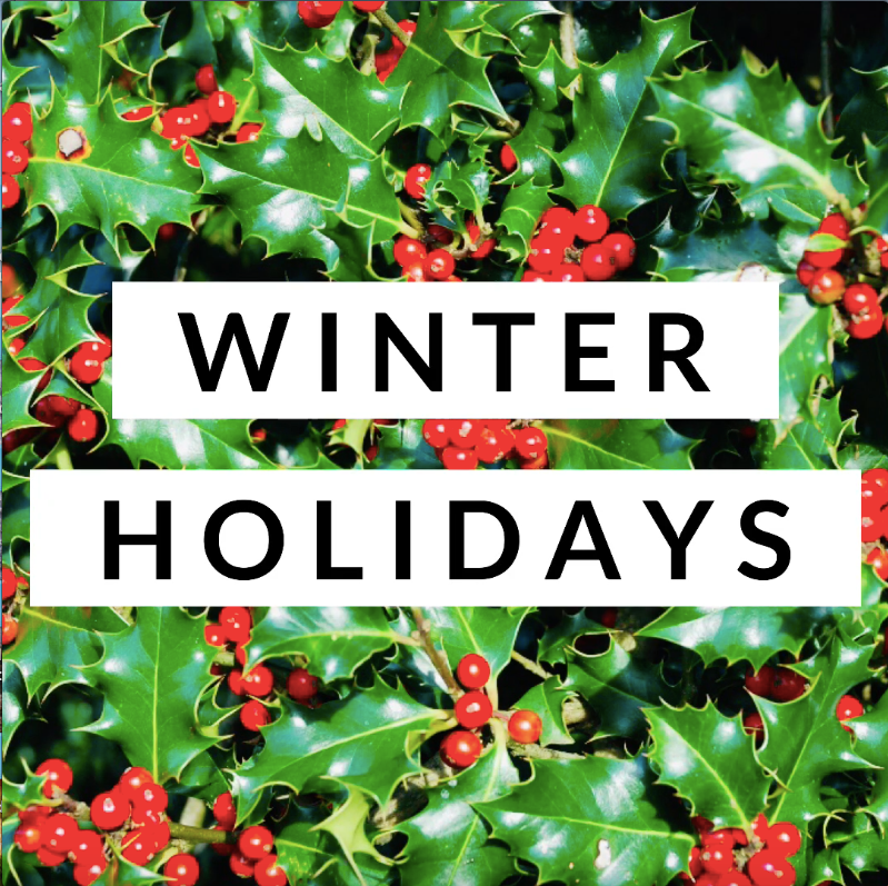 FREE winter holidays student informational video