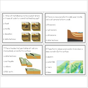 Earth's Structure Task Cards (Earthquakes, Tectonic Plates, Volcanoes & More)