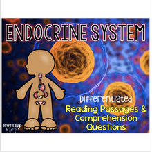 Load image into Gallery viewer, Endocrine System Differentiated Nonfiction Reading Passages