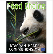 Load image into Gallery viewer, Food Chains Diagram & Comprehension Questions