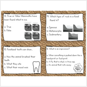 Fossils Task Cards