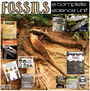 Fossils Unit: Games, Activities, & Assessments bundle
