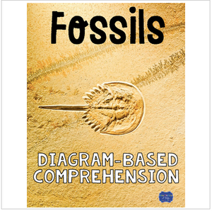 Fossils Diagram and Comprehension Questions